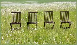 four empty chairs in a grassy field, all facing the same way